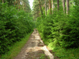 Акшуатский парк-дендрарий